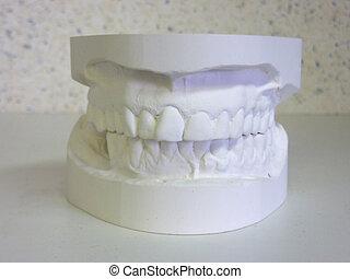 blanc, bouche, plâtre