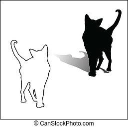blanc, chat noir