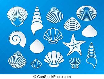 blanc, coquilles, mer, etoile mer, icônes