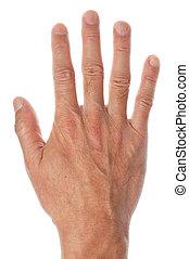 blanc, droit, fond, main humaine