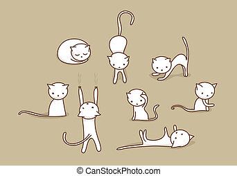 blanc, ensemble, chat