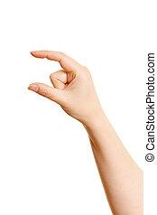 blanc, femme, quelque chose, tenant main