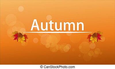 blanc, feuilles automne, fond, ligne