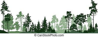 blanc, forêt, arrière-plan., illustration, isolé, vecteur, arbres.