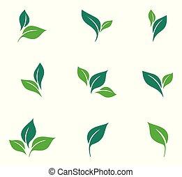 blanc, formes, arrière-plan., plants., eco, éléments, ensemble, divers, isolé, logos., vert, vecteur, icône, bio, feuilles, arbres