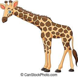 blanc, girafe, isolé, fond, dessin animé