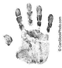blanc, isolé, fond, empreinte doigt