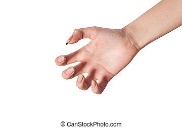 blanc, main, quelque chose, femme, atteindre