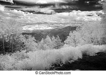 blanc, noir, nature