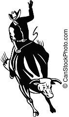 blanc, noir, retro, lessivage, rodéo, taureau, cow-boy, cavalier, équitation, bronco