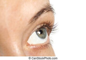 blanc, oeil femme, isolé, fond