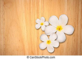 blanc, plumeria, fleur, sur, bois, fond