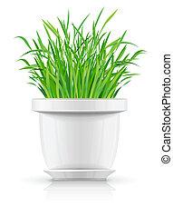 blanc, pot fleurs, herbe verte