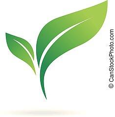 blanc, résumé, naturel, arrière-plan., ensemble, vert, icône, feuille, plat, icon.