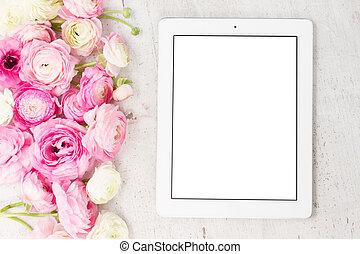 blanc, rose, ranunculus, fleurs