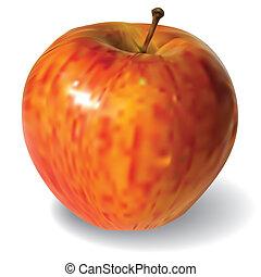 blanc rouge, pomme, fond, isolé