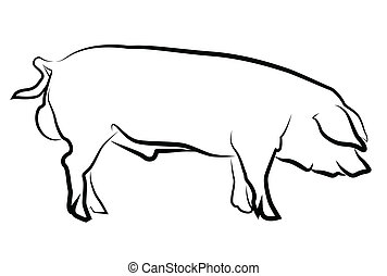 blanc, silhouette, isolé, cochon