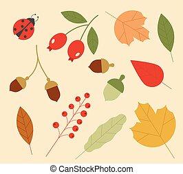 blanc, simple, arrière-plan., ensemble, coloré, style., icônes, isolé, autumn., feuilles, berries., plat, dessin animé