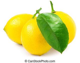 blanc, trois, citrons, isolé