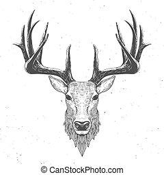 blanc, vendange, main, dessiné, cerf, illustration, tête
