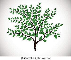 blanc vert, feuille, isolé, fond