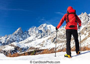 blanc, wandelaar, pa???e?, blanc., panorama, italy., massif, mont, rusten, het kijken, beroemd, reis, trekking, courmayer, gedurende, du, winter