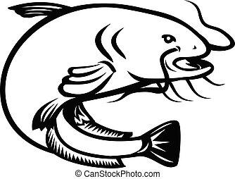 blanc, wels, sauter, retro, poisson-chat, noir, côté