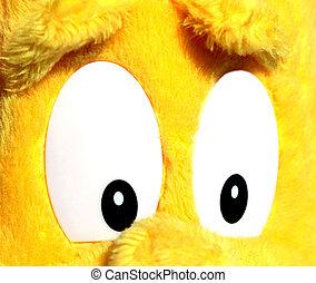 crapaud natterjack yeux jaune epidalea yeux calamita crapaud haut jaune natterjack. Black Bedroom Furniture Sets. Home Design Ideas