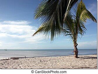 blanca, playa