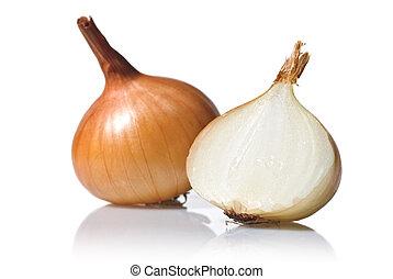 blanco, aislado, cebolla