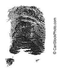 blanco, aislado, fondo., tinta negra, fingerprints., huella ...