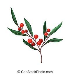 blanco, baya, plano de fondo, ramita, vector, hojas, aislado, rojo verde, ilustración