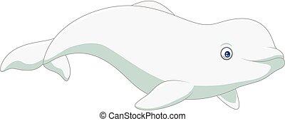 blanco, beluga, aislado, plano de fondo, caricatura