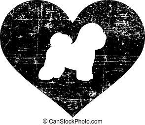 blanco, corazón, frise de bichon, negro