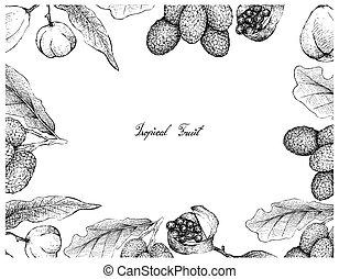 blanco, fruits, karo, plano de fondo, korlan
