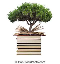 blanco, libros, árbol, aislado, plano de fondo