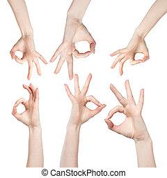 blanco, mano, aprobar, aislado, señal