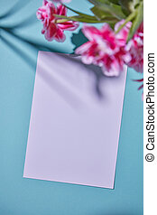 blanco, marco, adornado, con, rosa florece, en, un, azul, papel, fondo.