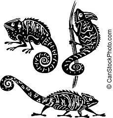 blanco, negro, camaleón