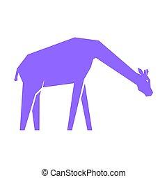 blanco, púrpura, aislado, jirafa
