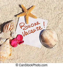 blanco, papel, arena de la playa, estrellas de mar, conchas, verano