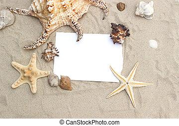 blanco, papel, en, arena de la playa, verano, estrellas de mar