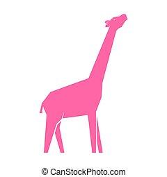 blanco, rosa, jirafa, aislado