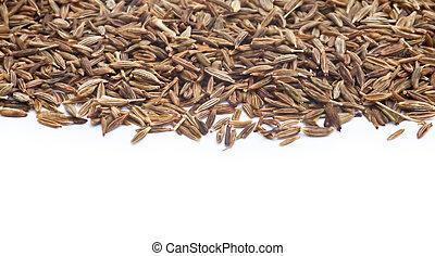 blanco, semillas, comino, plano de fondo