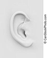 blanco, suave, ear., humano, 3d