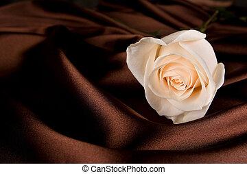 blanco subió, en, marrón, seda