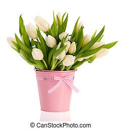 blanco, tulipanes, en, rosa, cubo
