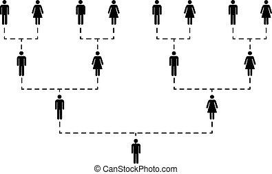 blanco, varios, árbol, generaciones, familia