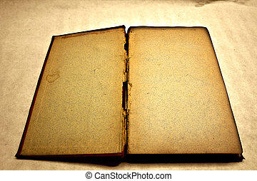 Blank and antique open book