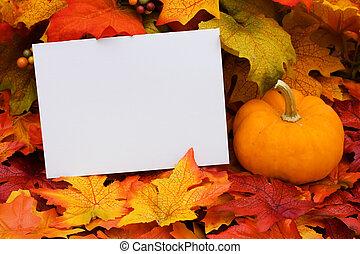 Blank Card - A blank card with a gourd sitting on a fall...
